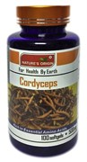 Nature's Origin Cordyceps Кордицепс 100 капсул 500мг 虫草胶囊